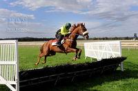 Ballarat Equine Vet Clinic