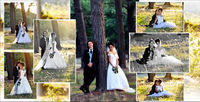 Ballarat Mining Exchange Wedding, Photography